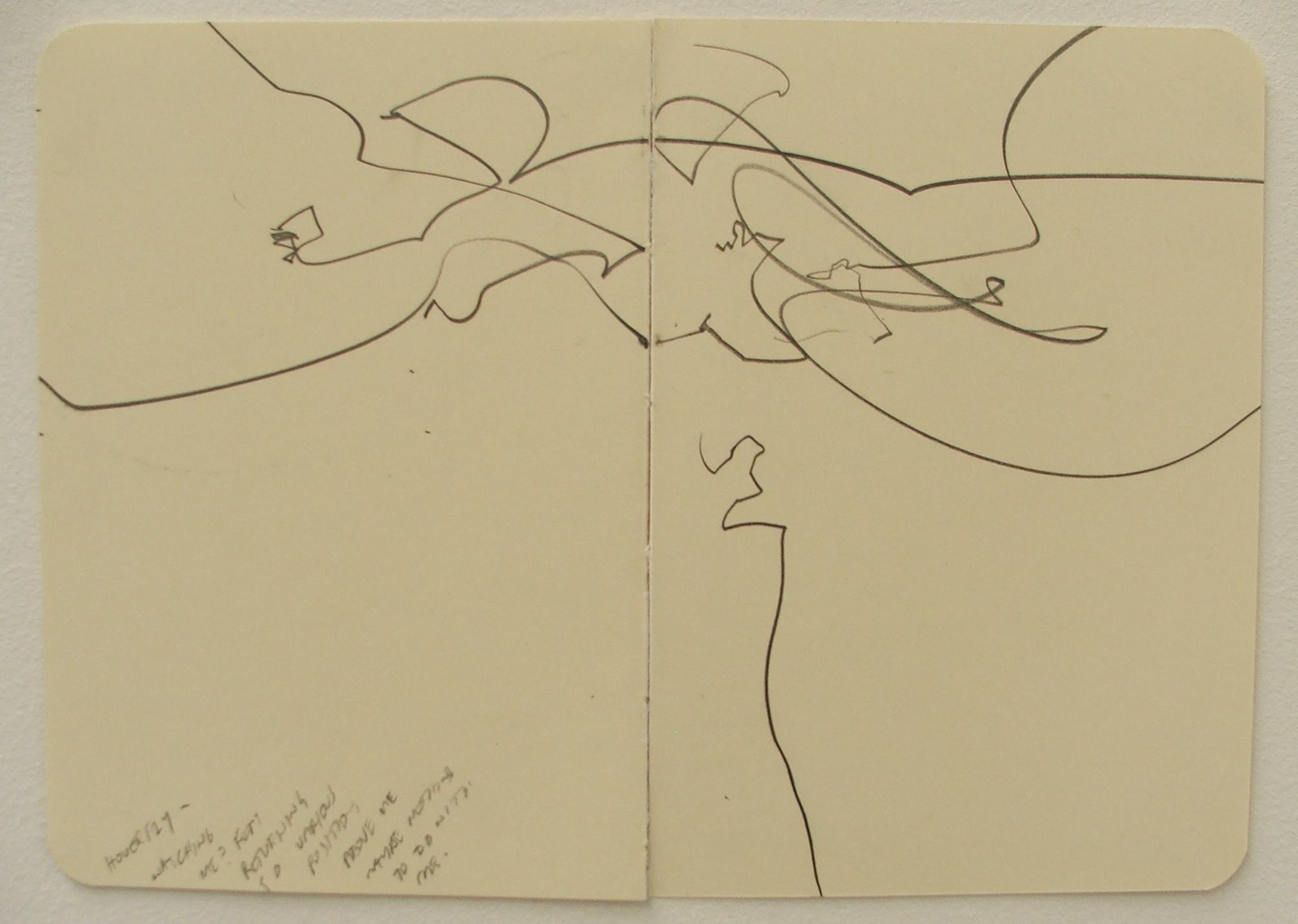 robin jones fly drawing