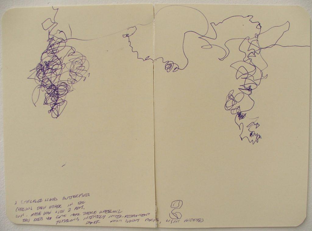 robin jones drawing speckled wood butterflies